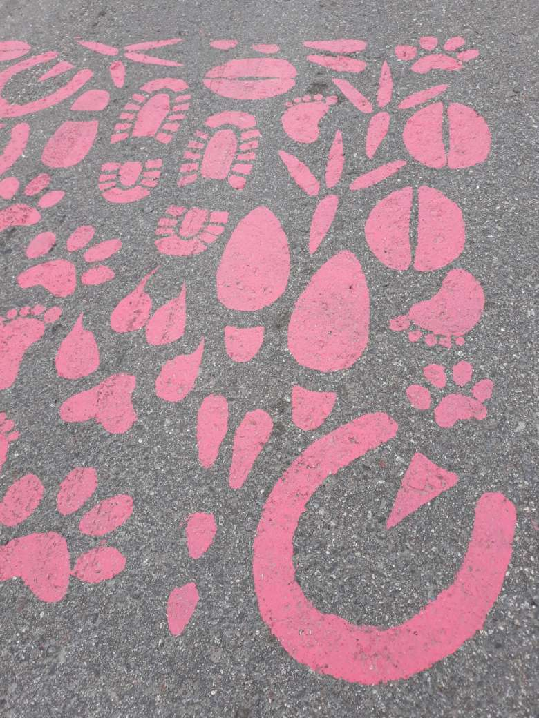 Katuun pinkillä maalilla maalattua Orivesi-kuosia jäähallin mäessä.