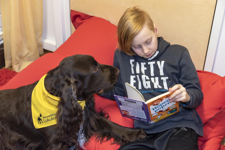 Lukukoira Bobo kuuntelee tarkkaavaisena kun poika lukee kirjaa.