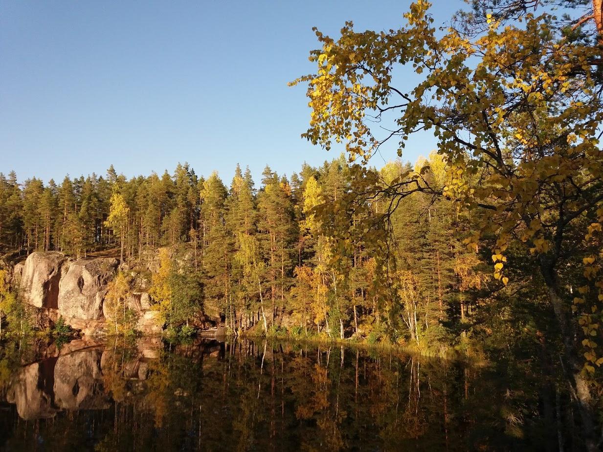 Vuorijärven seutu kesällä. Mäntymetsää järven takana. Puut heijastuvat veteen. Rannassa näkyy kallioita kuvan vasemmassa laidassa. Taivas on sininen.