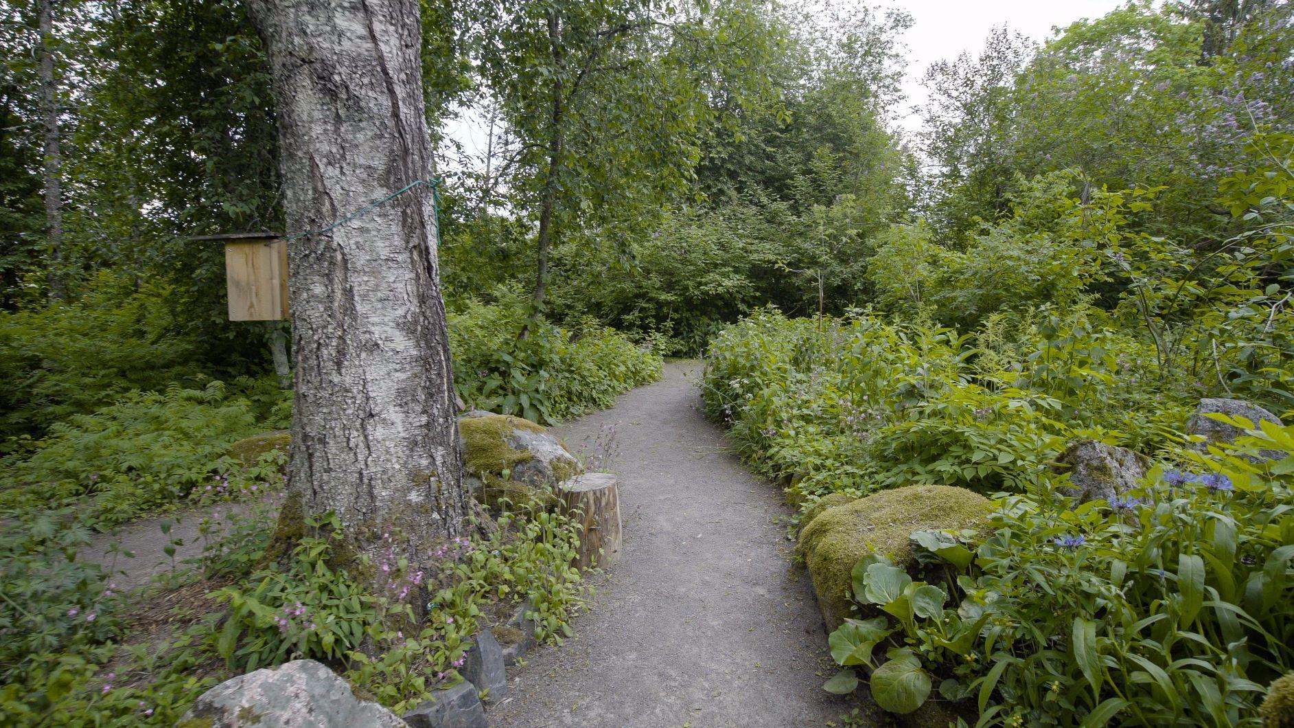 Hörtsänän arboretum sijaitsee Orivedellä.