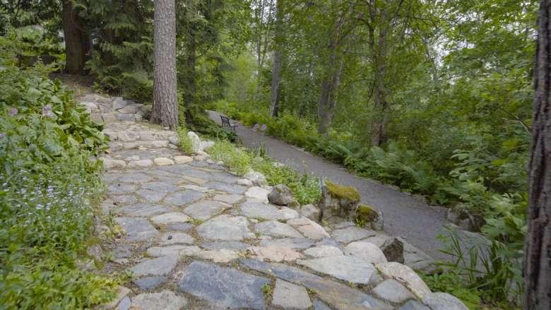 Hörtsänän arboretumin kivettyä kulkureittiä ja kasvillisuutta.