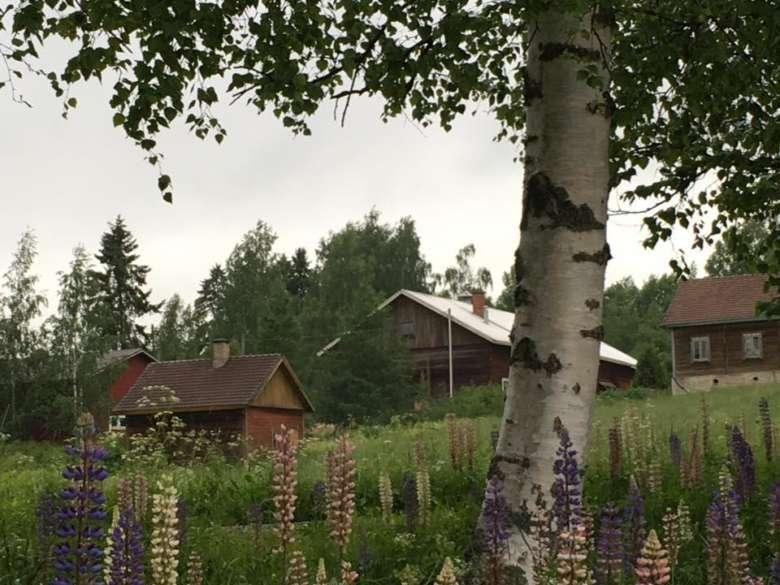 Pitkäjärven kylän maisemaa.