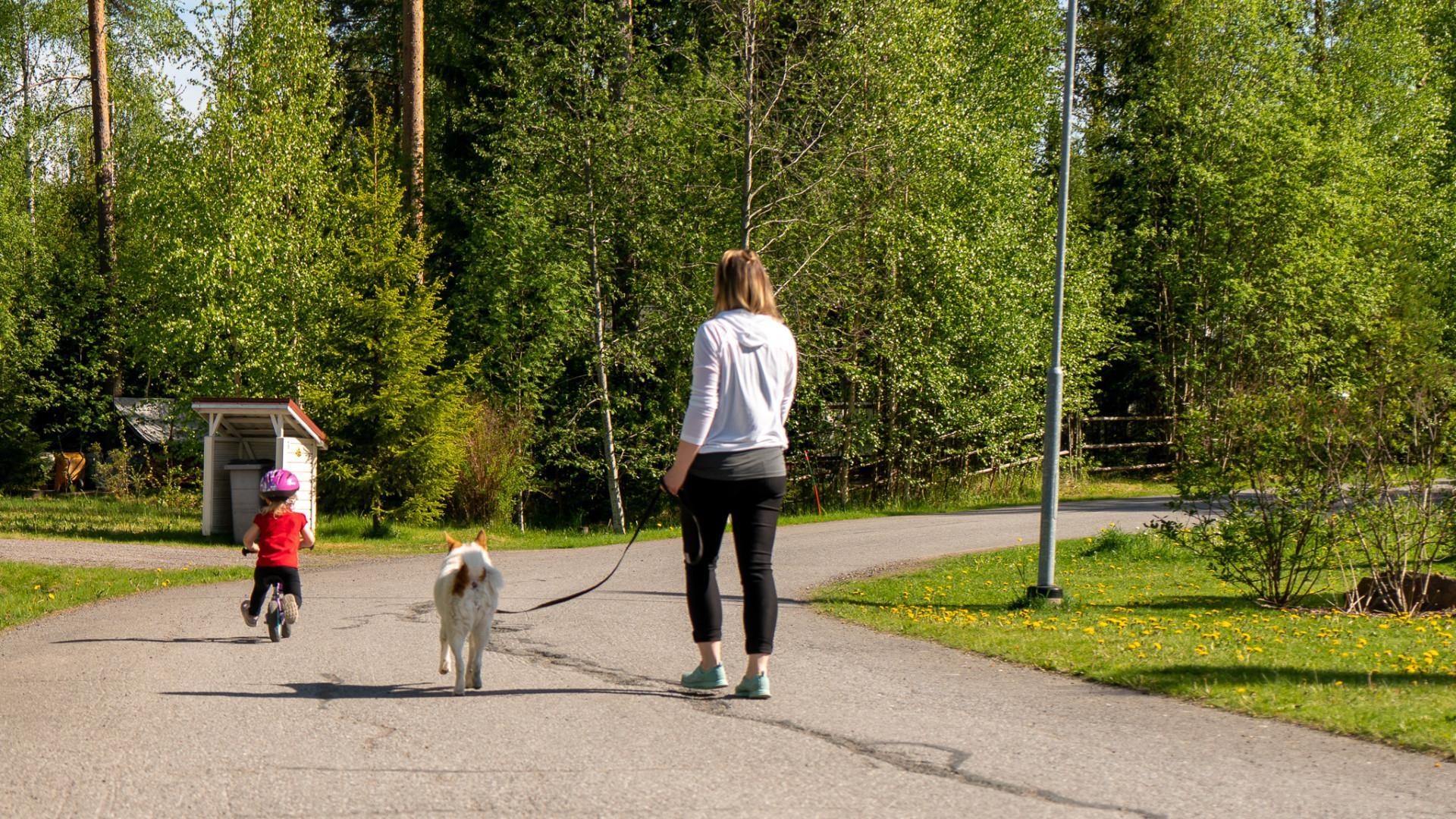 Nainen taluttaa koiraa ja pikkutyttö pyöräilee kadulla.