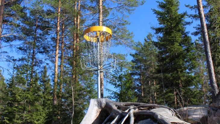 Heittokori Rovastinkankaan frisbeegolf-radalla.