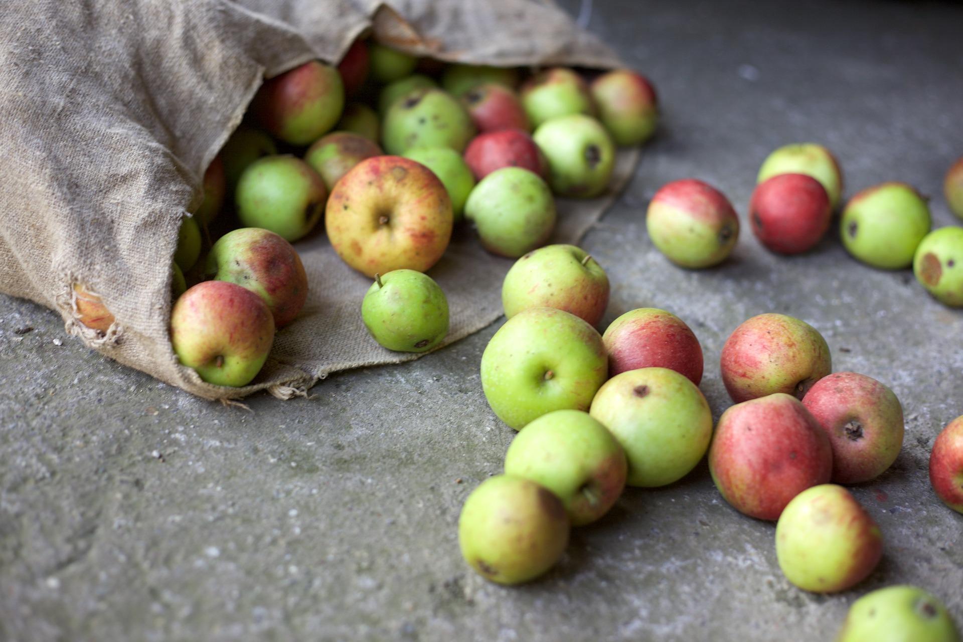 Omenoita säkissä pöydällä.
