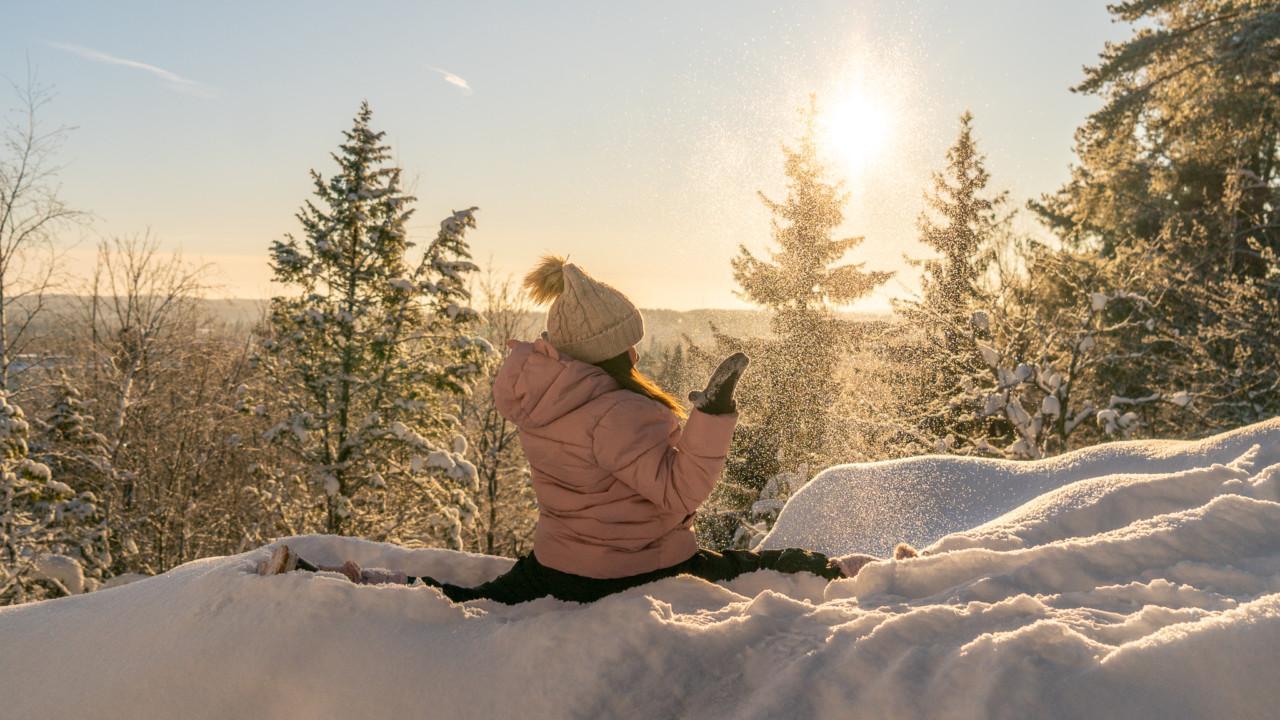 Villasukat lumessa