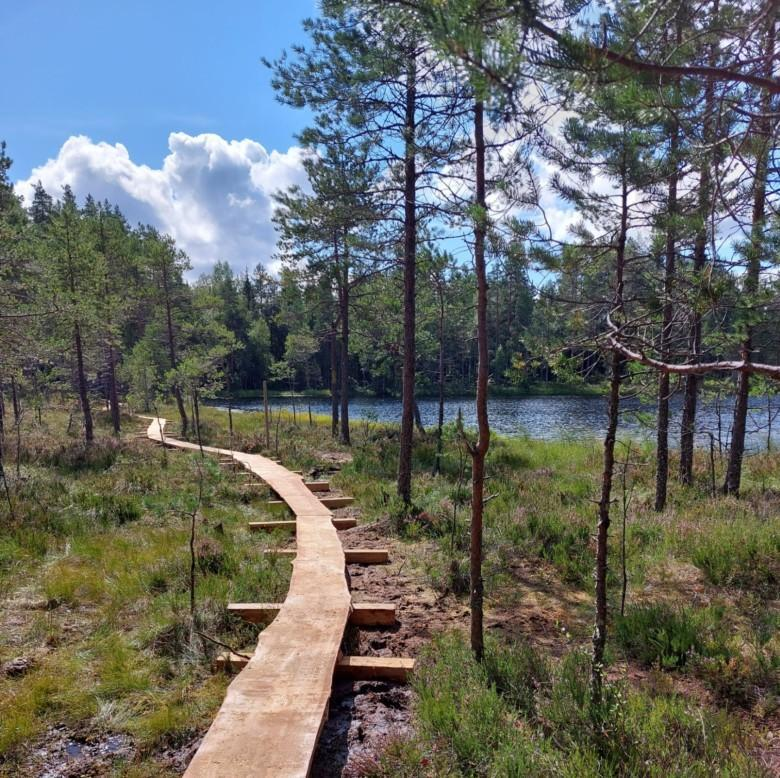 Iso-Vuorijärven uudet pitkospuut